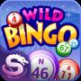 icon Wild Bingo(Wild Bingo - GRATIS bingo + slots)