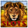 icon Safari - slot